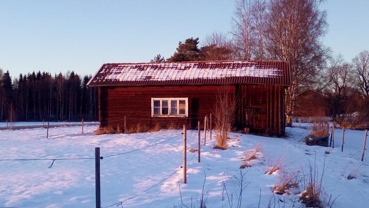 Semla, ice fishing andsnow