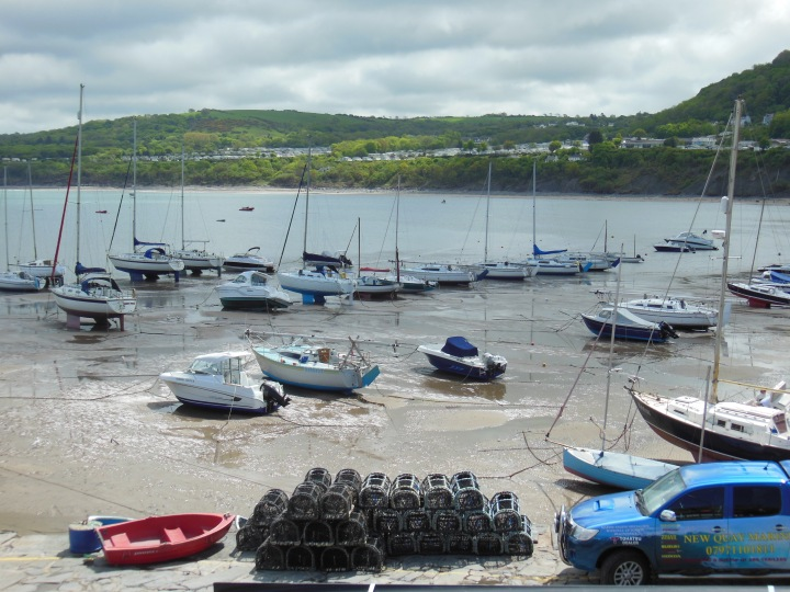 Habor of New Quay